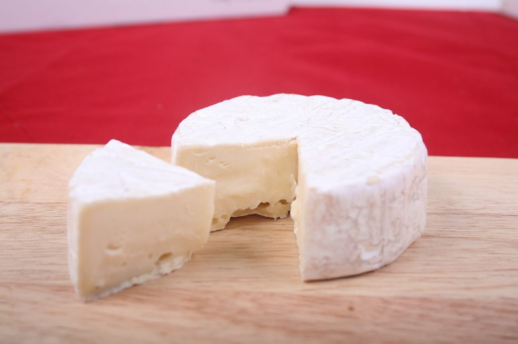 cheese, brie cheese, food